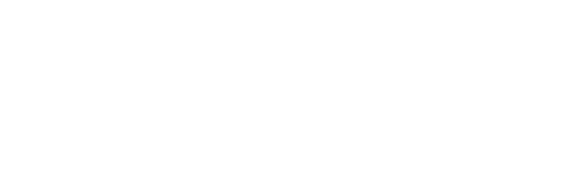 Silesia Automotive Logo